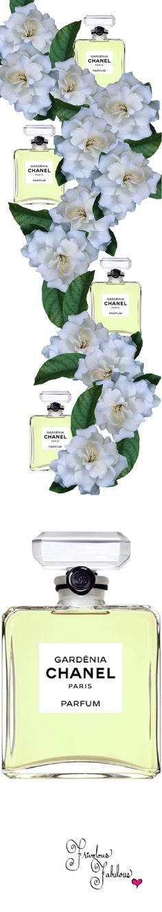 Chanel GARDÉNIA PARFUM | House of Beccaria# V