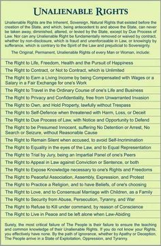 The post Unalienable Rights appeared first on Common Sense Evaluation. Government Lessons, Teaching Government, Us History, History Facts, American History, American Pride, Political Quotes, Tecno, Law School