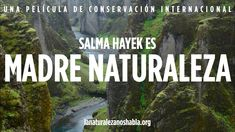 Salma Hayek es Madre Naturaleza de La Naturaleza Nos Habla, Conservation International (Smoothness of her voice soothes and draws listener in, Julia Roberts' voice doesn't have same effect in English version)