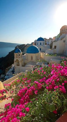 Lush balcony in Santorini, Greece • photo: Gold Street Sostis Travel