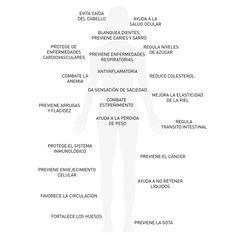 Nutre tu cuerpo: fresa ©blamag