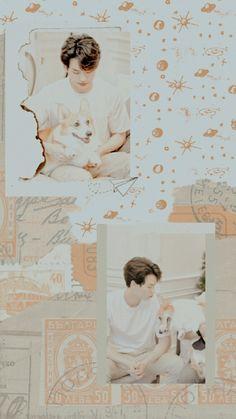 Jungkook Cute, Aesthetic Pictures, Aesthetic Wallpapers, Bright, Boyfriends, Rabbit, Bunny, Pastel, Orange