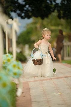 Lush beach wedding  |  luminaire foto