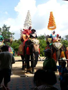 elephant 's show from Bangkok