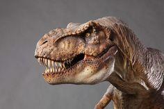 T-Rex maquette from Jurassic Park T Rex Jurassic Park, Jurassic Park World, Dinosaur Images, Dinosaur Art, Dinosaur Pictures, Cool Dinosaurs, Prehistoric Creatures, Tyrannosaurus Rex, Tier Fotos