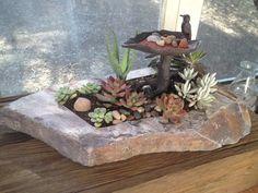 Miniature bird bath succulent planter  by Naturalideaz on Etsy