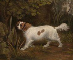 A Cavalier King Charles Spaniel, Sawrey Gilpin