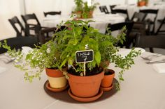 Centerpieces - terracotta pots with flowers and herbs. Great wedding favor!    Theme: Garden wedding in the city. #gardenwedding #centerpieces #herbs