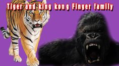 Tiger and king kong Finger family nursery kids animated rhyme Finger Family, King Kong, 3d Animation, Nursery, Funny, Youtube, Kids, Movie Posters, Young Children