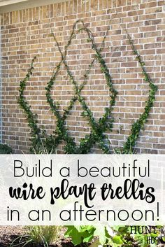 How to Build A DIY Wire Trellis on a Wall<br> Add a gorgeous focal point to your landscape by adding this diamond patterned wire trellis to your yard. Easy DIY wire trellis you can complete in an afternoon along with a trellis plant selection idea list! Hops Trellis, Patio Trellis, Pea Trellis, Wire Trellis, Bamboo Trellis, Grape Trellis, Arbors Trellis, Trellis Ideas, Plants For Trellis