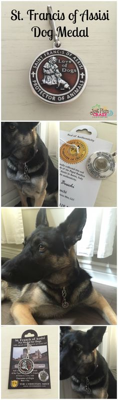 The dog medal has St. Frances of Assisi kneeling down & giving his blessing to a dog. On the back is a capsule filled with soil from the Basilica.