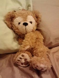 My lil Disney Duffy bear.