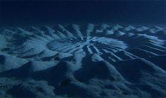 Circlos Subacuáticos: Estos círculos son creados por el pez globo masculino en Japón como parte de un ritual de apareamiento.