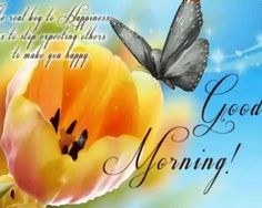Looking for Beautiful Good Morning images ? Check out collection of Beautiful HD images,photos ,pic's,wishes and Greeting to cards. best good morning top images | Your Good Morning stock images are ready.Download all free of royalty-free photos and vectors.use them in commercial design's under photos. best good morning images | Our proud new collection of Good Morning images is here to add that refreshing touch to the starting of our day. #good_morning #good_morning_wishes… Good Morning Gif, Good Morning Wishes, Good Morning Images, Images Photos, Hd Images, Wishes Images, Commercial Design, Morning Quotes, Royalty Free Photos