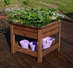 DIY: Unik urtekasse på 1-2-3 - Byggmakker+