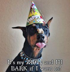 A Birthday Party For Dakoda. #doberman #dogbirthday