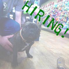Healthy Pet in Austin, Texas is hiring!  Call the store or visit their website to get an application! #Hiring