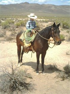 Buck and nickel...nevada. Cowboy Horse, Cowboy And Cowgirl, Bucking Bulls, Little Cowboy, Charro, Cowboys And Indians, Ranch Life, Western Art, Rodeo
