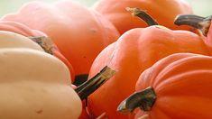 Hofgut Upper tub Wilderness, Tub, Wildlife, Pumpkin, Vegetables, Food, Bath Tub, Pumpkins, Vegetable Recipes