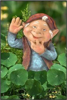Hi gnome.... Love Him!!!!