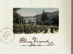 Palmaz Vineyards In Napa valley- I heard amazing things about this, private family owned by appt only. Great food and wine pairings