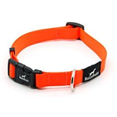 MY PET Dog Collar Design for Pet Cat Puppy Pitbull Bulldog Adjustable Outdoor Cute No Pull Large Medium Plaid Leads Antirust Buckle Comfortable Webbing Nylon Strong Solid Orange --- You could find more details by visiting the image link. (This is an affiliate link and I receive a commission for the sales)