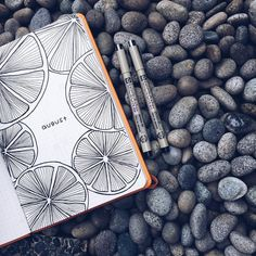 beautiful line drawing, orange slices journal art illustration Bullet Journal Inspo, Bullet Journal August, Bullet Journal Ideas Pages, Bullet Journal Spread, Journal Pages, Bullet Journal Lined Paper, Bullet Journal Months, Journal Layout, My Journal