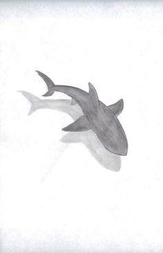 "Pencil Drawing Patterns Shark By ""Kyah Leanne"" 3d Drawings, Animal Drawings, Drawing Sketches, Pencil Drawings, Drawing Ideas, Drawing Tips, Shark Drawing, Ocean Drawing, Dibujos Zentangle Art"