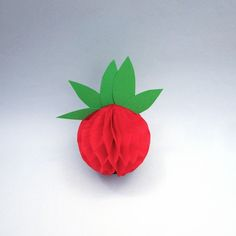 #tomato #vegetable #food #paperfood #tity #party #partydecor #eventdesigner #eventdesign #eventplanning #eventplanner #paper #honeycomb #honeycombball #tissuepaper #minimal #design #red #white #green #love #withlove #handmade #craft #crafty #diy #spain #zaragoza