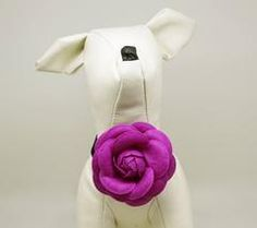 Magenta Floral Puppy and Kitten Choker, Magenta pet accessory, Dogs and Cats Jewelry