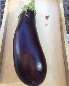 Espectacular la de hoy  #eggplant #berenjena #esberginia #huertourbanopiluki #growmyownfood #urbangarden #macetohuerto #huertourbano #huertoencasa #huertoenmacetas