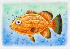 ILUSTRAÇÃO E ARTE -  PEIXE DE ÁGUA SALGADA EM CARTOON - SALTWATER FISH - BADEJO QUADRADO - ANO DE 2012