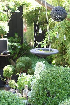 Love the hanging bird bath and sphere...Katarinas Trädgård i Lund = Katarinas Garden in the town of Lund, sweden.