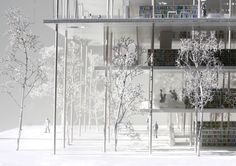 Between Books and Trees - jaja Architects