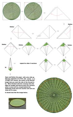 diagram for lily pad with raised sides
