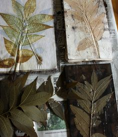 ecoprints process with pecan leaves from Lotta Helleberg