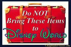 List of items not allowed @ Disney World (including no wagons!)