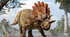 dinosaur diversity - Google Search