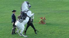 How The Andalusian Horses Spain  Dance  Show- at ADEC 10 FEB 2011.avi