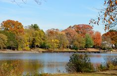 Located in Thompson Park, Manalapan Lake is used for recreational purposes such as fishing.