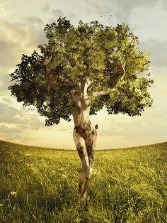 J'aime cette oeuvre parce que l'arbre a deux sens; on peut voir un arbre normale ainsi qu'un arbre avec un tronc en forme d'humain. J'aime aussi le ciel qui a l'air réel.