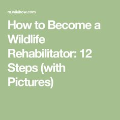 How to Become a Wildlife Rehabilitator: 12 Steps (with Pictures)