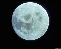 July 31 2015 -the 13th Moon is called the Blue Moon, this occurs when four full moons fall within the same season (as regular seasons only have 3 full moons, the fourth full moon between solstice and equinox, or vice versa, is The 13th Moon was called Ruis or Elder. The Blue Moon is considered the 'goal moon.'