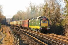 "From the 17th - 19th April #BluebellRailway will be visited by two ""Deltic"" diesel #locomotives; which will haul #trains between #SheffieldPark and #EastGrinstead.www.bluebell-railway.com/event/diesel-weekendPhoto - Nick Green"