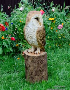 Here is the finished sleeping barn owl. #woodworking #sculpture #wildlifeart #garden #chainsawcarving #art #owl #barnowl
