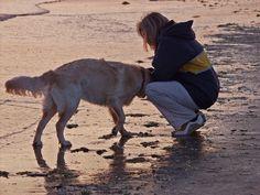 Meine Fewo-Tipps für den Nordsee-Urlaub mit Hund: http://www.premium-unterkunft.de/ferienhaus-hund?view=objects #reise #urlaubmithund #hundeurlaub #nordsee #ferienwohnung