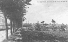 Huizerweg ter hoogte van nummer 4b. Links leerfabriek Koelit, de voorzijde. Rechts bomen en wieland. Op de achtergrond bomen - Europeana