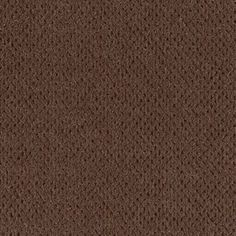 Everlasting Beauty style carpet in Blueridge color, available wide, constructed with Mohawk Wear-Dated Revive carpet fiber. Mohawk Carpet, Mohawk Flooring, Patterned Carpet, Light Up, Woodland, Patterns, Fall, Colors, Room