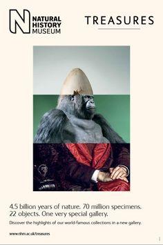 Natural History Museum: Treasures posters