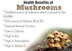 FOOD FACT: Mushroom Benefits www.getdailyrecipes.com